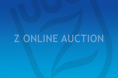 28.500 voor topper Z Online Auction