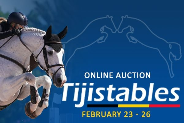 Auction Tiji Stables